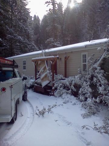 Tree on porch