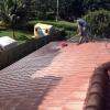 Roof Pressure Cleaned - 3