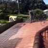 Roof Pressure Cleaned - 1