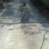 concrete driveway - dirty