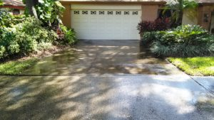 driveway-pressure-cleaning-safety-harbor-300x169.jpg