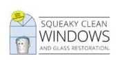 Squeaky Clean Windows Dallas.JPG